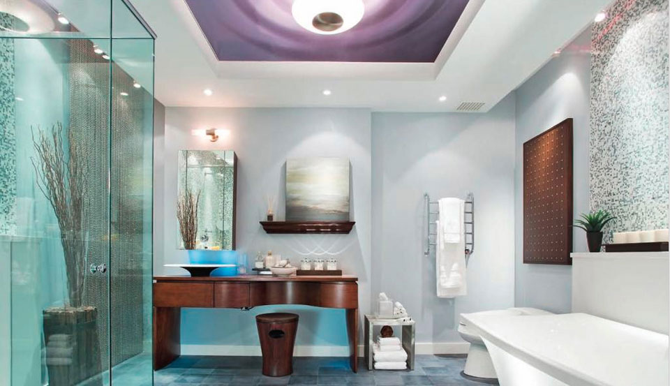 Best interior design house for Candice olson bathroom designs